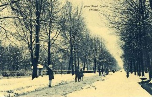 A scene of a snow-covered street in Quetta (1968). The street, called Layton Road, today has lost almost all of the beautiful old trees that can be seen in the picture.