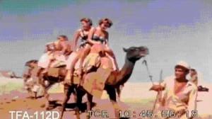 American tourists enjoy a camel ride at Karachi's Clifton beach in 1960.
